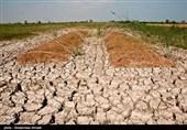 منابع آبی در منطقه نطنز ساماندهی نشده است