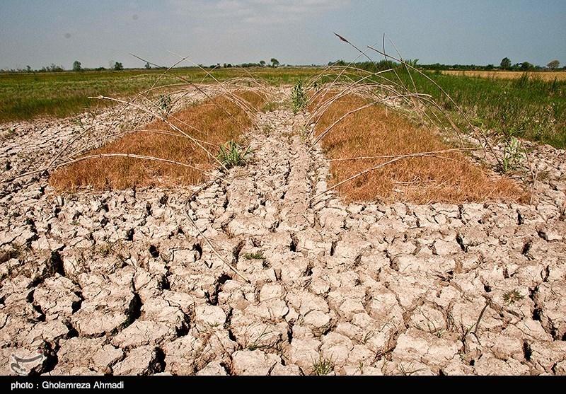 مشهد|برنامهای برای مدیریت منابع آبی در خراسان رضوی وجود ندارد