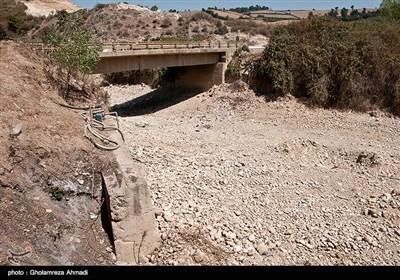 خشکی شالیزارهای مازندران