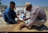 کهگیلویه و بویراحمد| نبود سیلوی ذخیره گندم به اندازه کافی؛ آیا امکان جلوگیری از خروج گندم وجود دارد