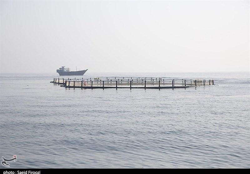 بزرگترین مجتمع پرورش ماهیان خاویاری دنیا در گلستان احداث میشود