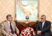 Iranian MP: US Trade War Upsetting Int'l Relations