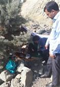 اسکان کودکان بیخانمان با مشارکت جهادگران «زندگی خوب» و ستاد اجرایی فرمان امام
