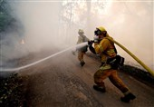 Milder Temperatures Help Firefighters Gain on Massive California Wildfire