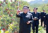 یادداشت|چند نکته درباره شایعات اخیر در مورد رهبر کره شمالی