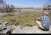 تهران| 6 هزار هکتار از بافت کشاورزی ملارد غیرقابل کشت است