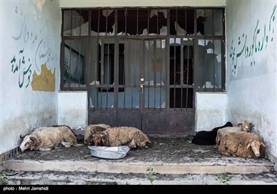 چوپانها بعد از برگشت از کوه گوسفندان خود را در حیاط مدرسه رها میکنند. محدودیتهای منابع طبیعی که دامداری را برای روستاییان محدود کرده و نبود جایگزین برای اشتغال روستاییان از دلایل محرومیت این مناطق است