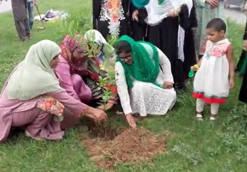گلگت بلتستان میں بھی شجرکاری مہم کا آغاز