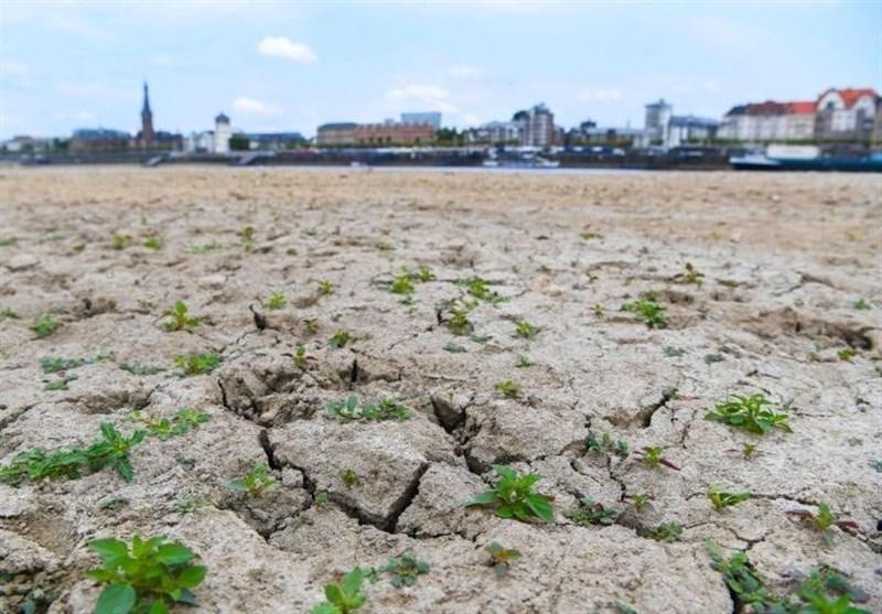 موج گرما در اروپا رود راین را خشکاند + تصاویر
