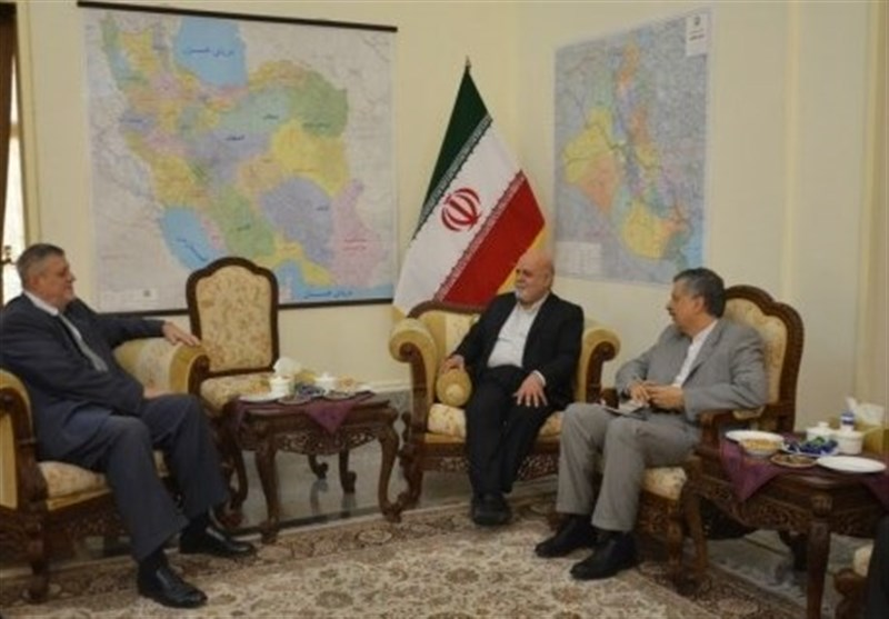 Iran to Spare No Effort to Help Boost Stability in Iraq: Envoy