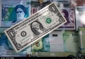 «به زودی بازار ارز متعادل میشود»