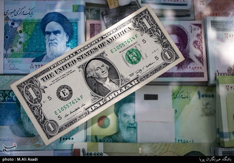 «به زودی بازار ارز متعادل می شود»