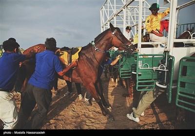 Horse Racing in Iran's Golestan Province