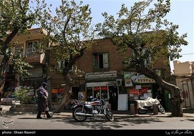 خانه ها و مغازه های قدیمی باغ فیض تهران
