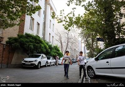 وجود درختان کهنسال و فضای سبز متعدد نشان دهنده این است که شما در محله ای قدیمی هستید که در گذشته محل تفریح مردم تهران بوده است