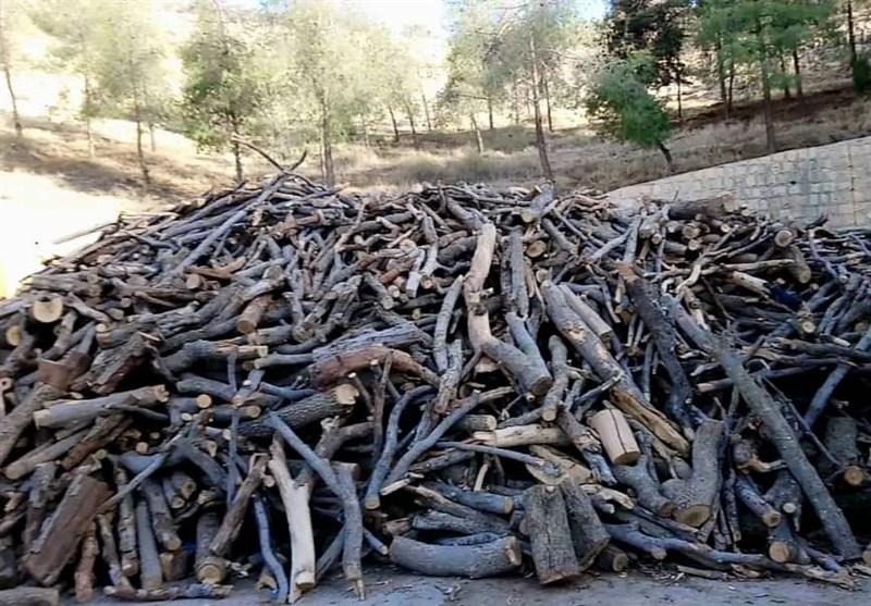 3 میلیارد ریال چوبهای جنگلی قاچاق در مازندران کشف شد
