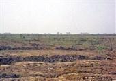 5500 کیلوگرم بذرهای مرتعی در یزد کشت میشود