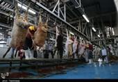 ارتقای بهرهوری کشتارگاههای صنعتی استان اردبیل پیگیری میشود