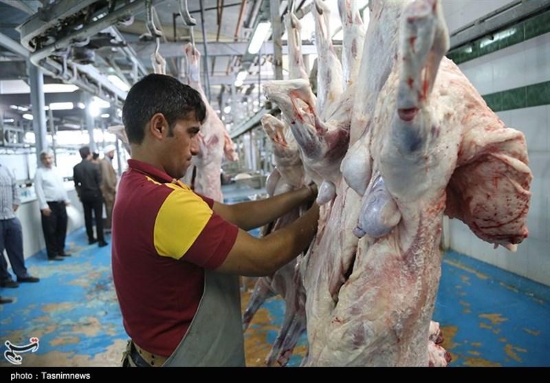 قیمت گوشت گوسفندی 70 هزار تومان است/ سوء استفاده برخی قصابی ها از شایعات