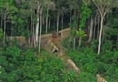 قبیلة منسیة فی عمق أدغال البرازیل