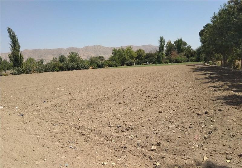 فیلم| وعدههای توخالی مترو دامن کشاورزان چشمه علی را گرفت