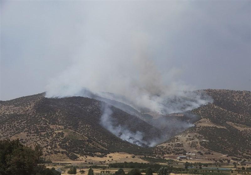 ایلام| جنگلهای کبیرکوه دچار آتشسوزی شد