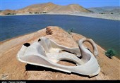 بحران آب ایران|وقتی «رنگ عطش» از پشت پرچینهای سدخاکی عبدلآباد بجنورد خودنمایی میکند