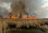 خوزستان| آتش هورالعظیم در حال خاموش شدن/ 2 نفر از عوامل آتش سوزی دستگیر شدند