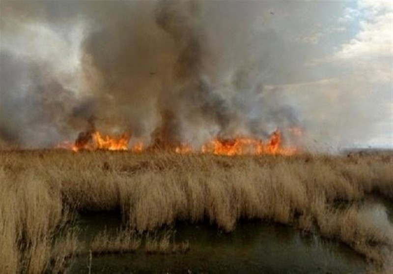 IRGC Aerial Operation Underway to Put Down Hour Al-Azim Wetland Wildfire (+Video)