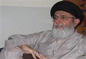 اسلامی ممالک ہالینڈ سے سفارتی تعلقات ختم کریں، حامد موسوی