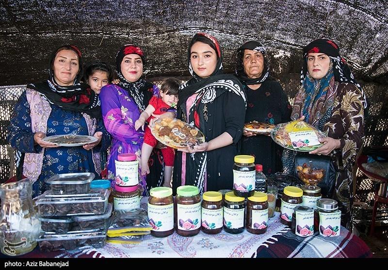 جشنواره انجیر گلوگاه گامی مهم در حمایت از تولید داخلی