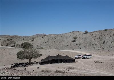 سرکشی نیروهای سازمان هلال احمر به دورترین روستاهای مرزی استان سیستان و بلوچستان