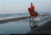 مشهد نایب قهرمان جهانی سوارکاری: سوارکاری با «باندبازی» پیش میرود؛ نقش پررنگ دلالان در انتقال اسبهای اروپایی به ایران