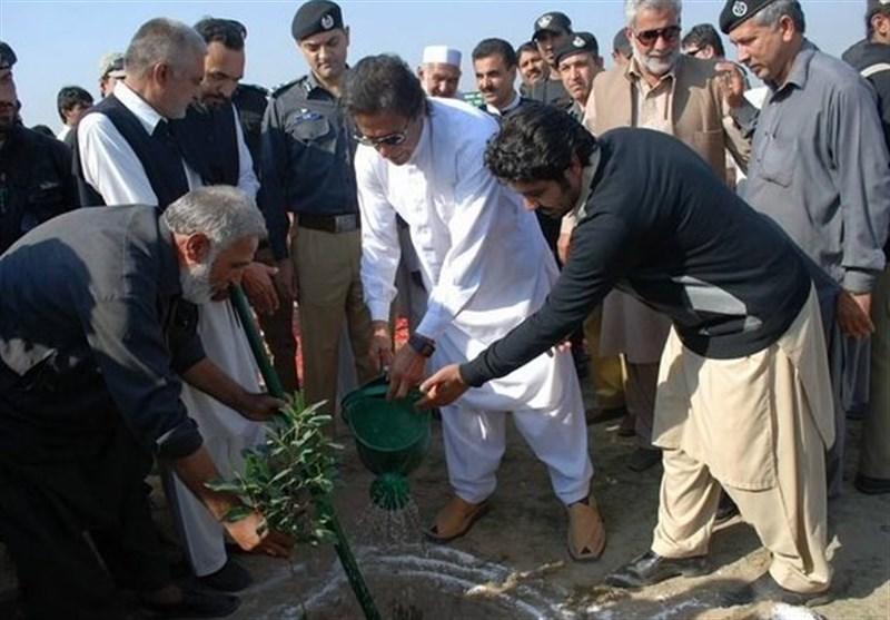 پروژه بزرگ کاشت درخت در پاکستان آغاز شد