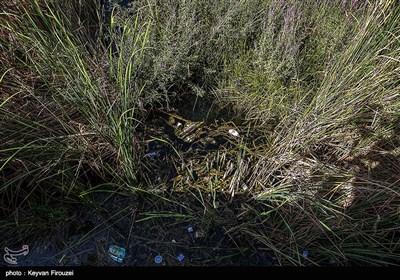 مرگ تدریجی بزرگترین دریاچه آب شیرین ایران