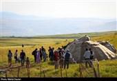 رئیس سازمان امور عشایر کشور در اراک: نباید بگذاریم به فرهنگ و اصالت عشایر صدمهای وارد شود