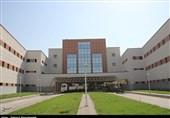 همدان| افتتاح طرحهای دهه فجر در شهرستان بهار 163 نفر را صاحب شغل میکند