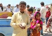 اقدامات جدید بسیج سازندگی در زمینه اشتغالزایی و کسب درآمد مناطق محروم خراسان جنوبی