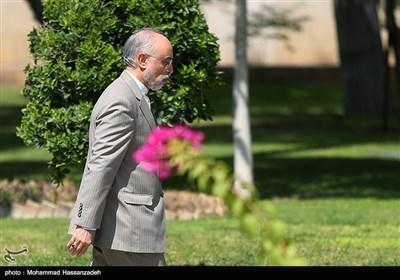 علیاکبر صالحی رئیس سازمان انرژی اتمی