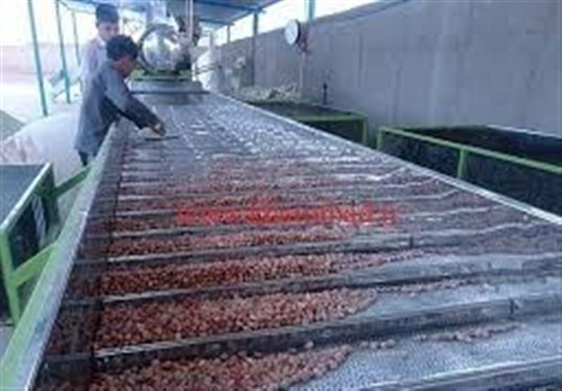 وزیر جهاد کشاورزی واحد فرآوری پسته را در دامغان افتتاح کرد