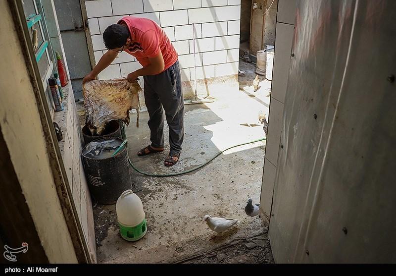 کارگاه دمام سازی حاج محمدعلی ناصر در شهرستان اهواز 40 سال در ساخت دمام سابقه دارد و این کارگاه اولین کارگاه ساخت دمام در اهواز است.
