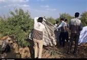 149 گروه جهادی به مناطق محروم اردبیل اعزام شدند