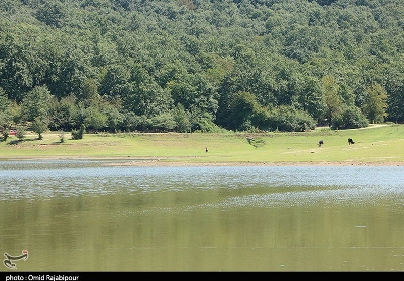 Saqalaksar Lake: A Beautiful Lake among Forest