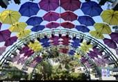 نمایشگاه فصلی گل استان مرکزی در اراک به روایت تصویر