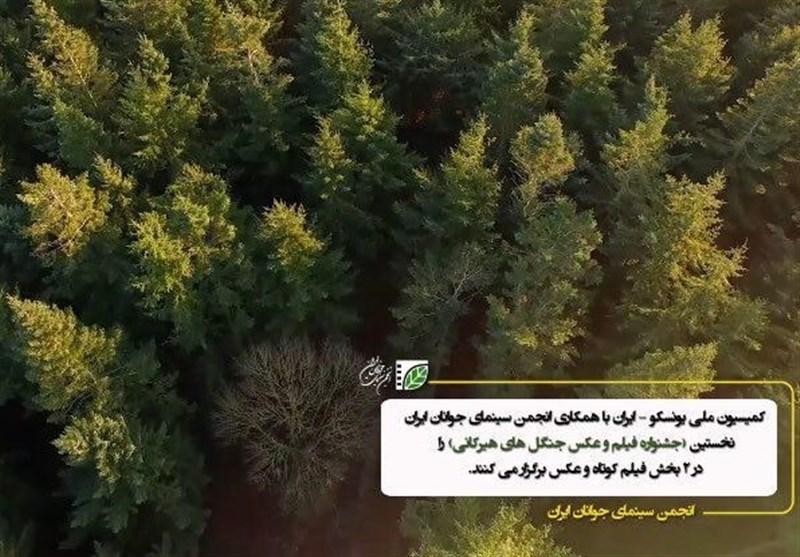 """مهلت شرکت در مسابقه عکس و فیلم """"ثبت جهانی جنگلهای هیرکانی"""" تمدید شد"""
