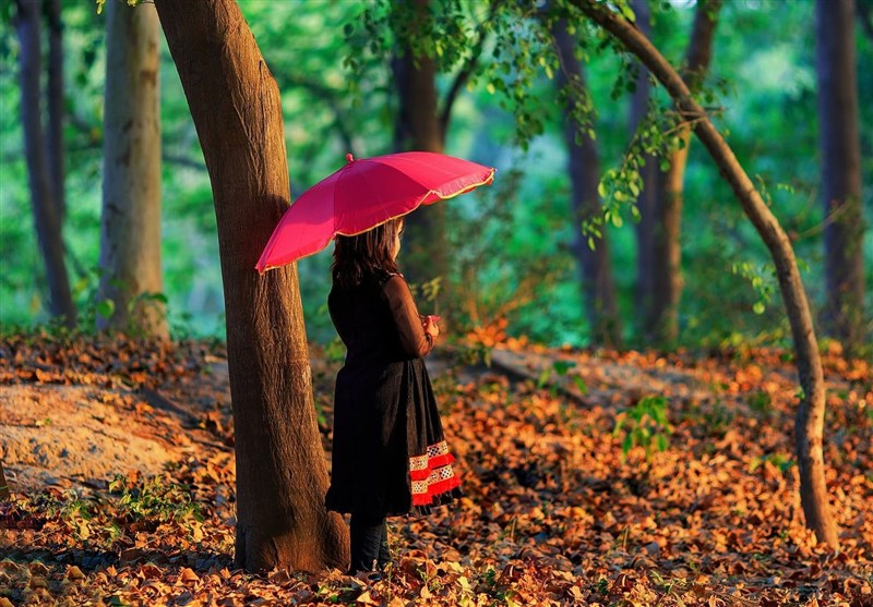 موسم خزاں ۔ شاعروں کی نظر میں