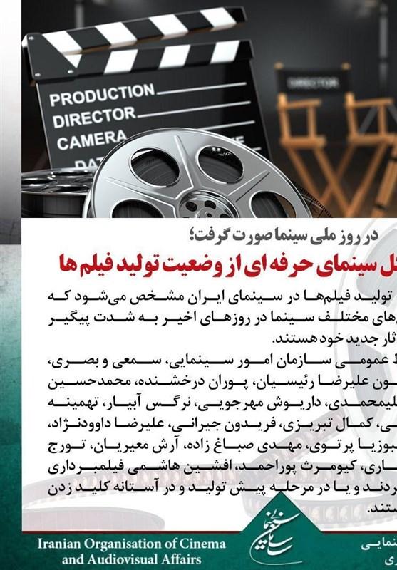در روز ملی سینما صورت گرفت؛ گزارش مدیرکل سینمای حرفه ای از وضعیت تولید فیلم ها