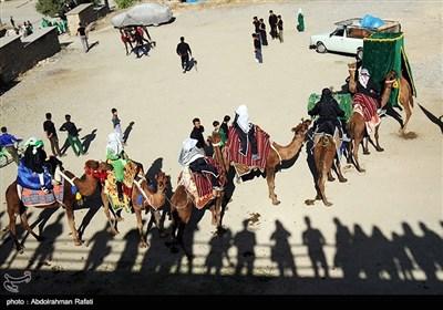 ورود نمادین کاروان امام حسین (ع) به کربلا