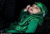 همایش شیرخوارگان حسینی در 41 کشور برگزار شد