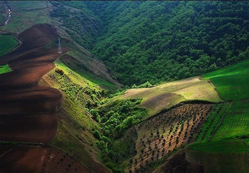 جزئیات ورود ارزیابان جهانی به ایران برای ثبت جنگلهای هیرکانی